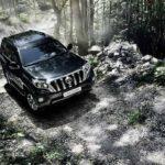Русские продажи авто сдизелем падают